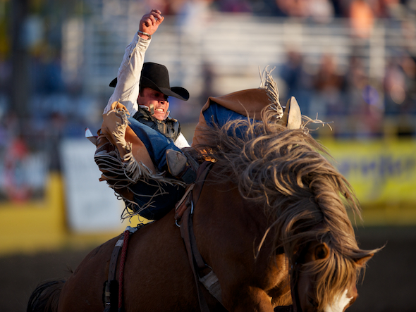 PRCA 2013 - Red Bluff Round-Up