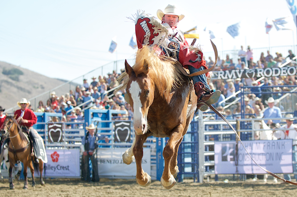 Steven Peebles of Redmond, OR rides -Q52 Baby Face of Cervi Championship Rodeo, Rancho Mission Viejo 2015